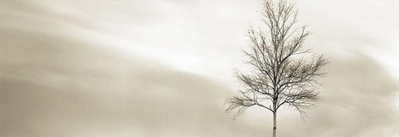 cropped-minimalist-art.jpg